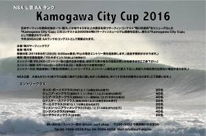 鴨川CityCup2016ポスター